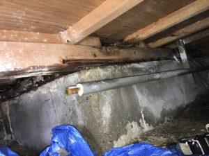 枚方市 東香里 床下から水漏れの音が 壁の中からも音がします