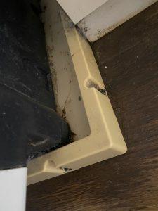 伊丹市 洗濯パンから水が溢れてくる 洗濯排水トラップ洗浄