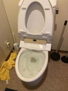 伊丹市 トイレ詰まり除去 パット落としています。