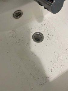 宝塚市 洗面排水詰まり 排水に物を落とした 排水取り外し