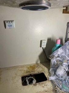 滋賀県 一軒家用ディスポーザーの撤去 排水栓新設 排水ホース取り付け